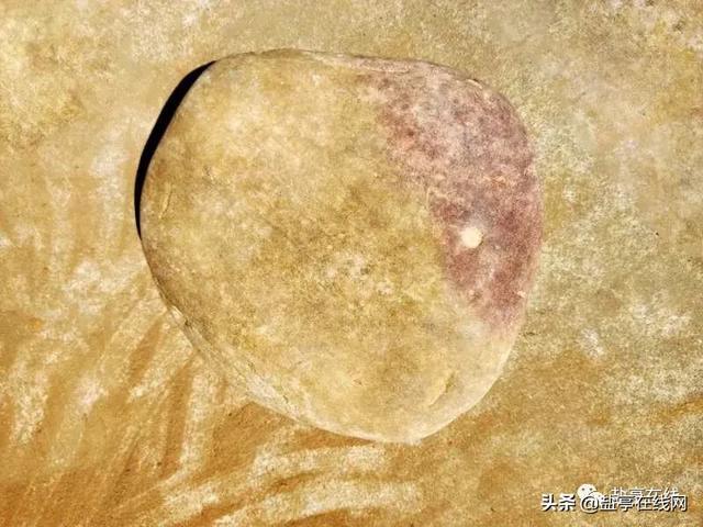 嫘祖故里盐亭发现三星堆文化时期重要遗址的前前后后