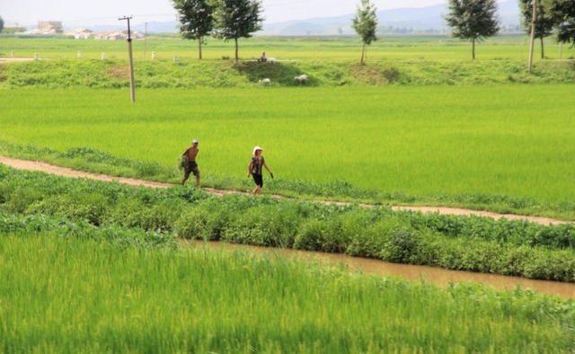 走进朝鲜:通过交通方式看朝鲜百姓的生活
