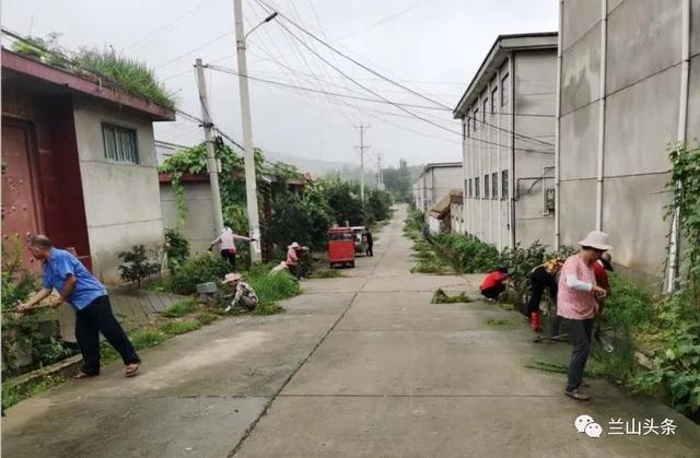 【创城进行时】白沙埠镇清理杂草净化家园;金雀山街道提升城区环境面貌