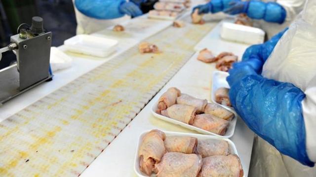 英国最大鸡肉厂集体感染 158名员工检测呈阳性