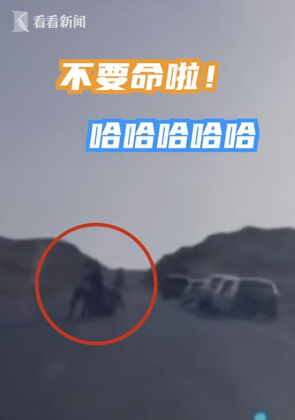 青海网红公路因拍照两年8起交通事故,今年日均30起违法行为