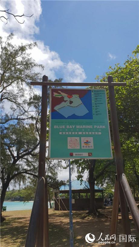 日本货轮漏油致毛里求斯面临环境危机