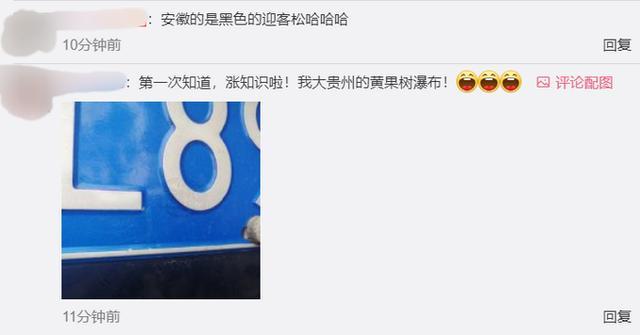 陕西的车牌上图标是兵马俑,四川是熊猫,云南是大象,快看你那里是啥?