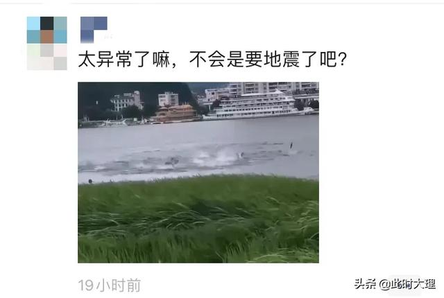 """大理洱海""""鱼群翻腾"""",石宝山""""猴群下山"""",朋友圈有人说是地震前兆?"""