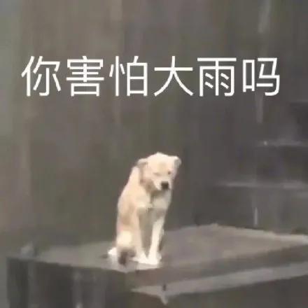北京暴雨!盘点那些年电视剧中的大雨名场面!