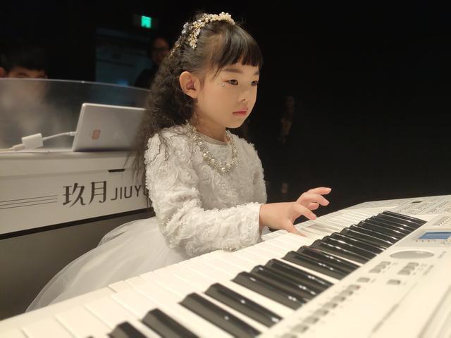 双排键琴是什么乐器