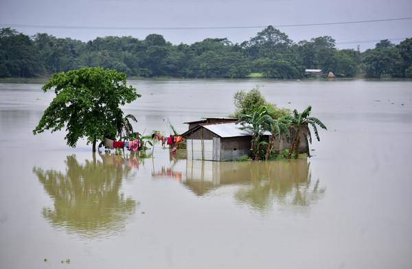 暴雨降临印度阿萨姆邦!洪水淹没2000多座村落 受灾人数破百万