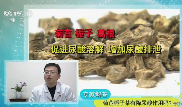 菊苣栀子茶喝那种降尿酸效果好