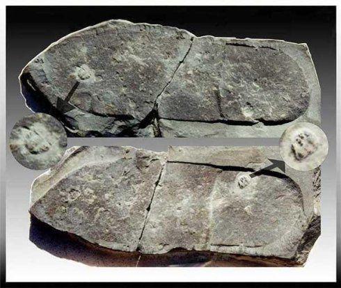 史前文明(地球遗留证据)