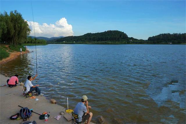 湖区钓鱼用什么饵料