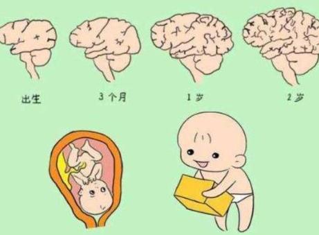 """宝宝出生""""头3年""""是关键,父母做好3方面,孩子智商会更高"""
