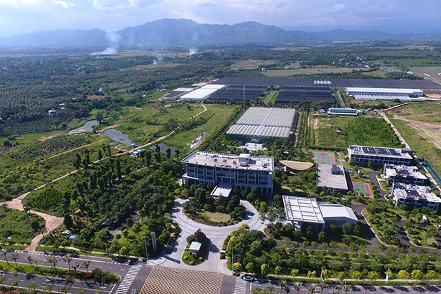 位居《财富》500强全球房企首位,碧桂园的定力与张力