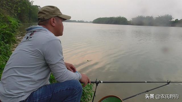 广州冬天什么钓鲮鱼