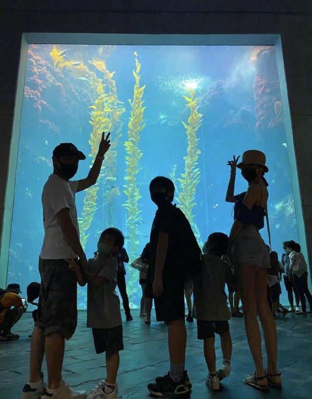 林志颖全家游水族馆,Kimi身高和爸爸只差一个头,一家五口超幸福