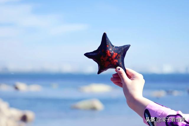 武汉人想带小孩去海边捡捡贝壳螃蟹,大家有哪些位置推荐?最好是人少的野外海边?