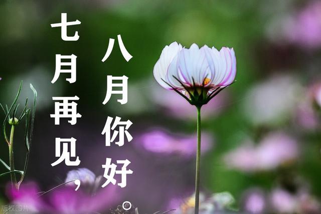 八月你好:愿所有的幸运都能不期而遇,愿所有的美好都能如期而至