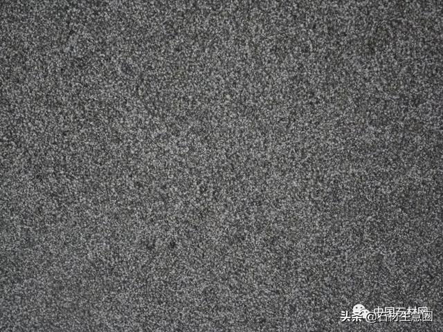 中国黑(蒙古黑)、芝麻黑、新福鼎黑、G684福鼎黑、珍珠黑