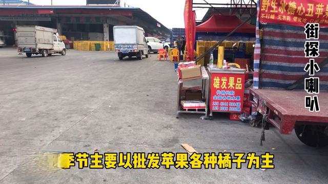 东莞大朗的水果批发市场在那里
