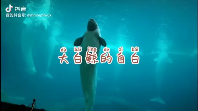 鲸的自述作文900字