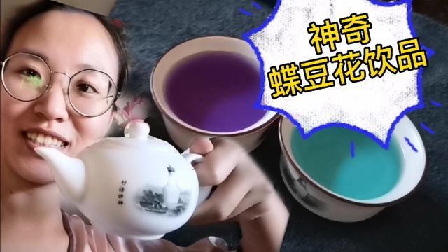 蝶豆花和什么能一起泡着喝
