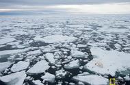 北极海冰消失得这么快,连科学家都吓了一跳!