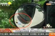 关注儿童安全:汽车盲区存在隐患,家长和驾驶员都要注意了!