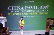 9岁中国女孩联合国演讲 别人家的孩子