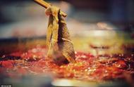 火锅的本命菜是什么不紧要,汤底麻辣或清汤也没差,这点才最重要