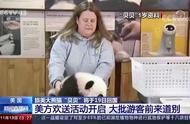 """旅美大熊猫""""贝贝""""将回国 大批游客备好纸巾来道别"""