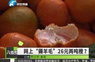 """""""羊毛党""""26元买两吨橙疑薅垮网店,律师这样说"""