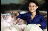 河南千亿首富招大学生养猪,月薪2万,看完他的创业史不得不佩服