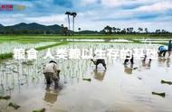 全球超八亿人没有充足的食物,希望看到此视频的人们可以珍惜食物