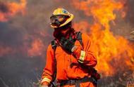 一文看懂为什么美国加州大火令人绝望? 野火不断已成为新常态