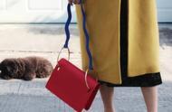小众设计的奇葩包包:喜欢我你怕了吗?最后一个像鸟笼!