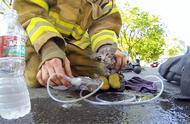 消防员为救小猫咪,就差人工呼吸了!尊重生命的典范!