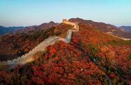 「秋意浓」红叶正当时 八达岭红叶岭进入最佳观赏期