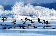 6个最适合冬天旅行的目的地