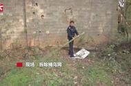 非法捕鸟网数十米长,民警现场拆除:网上还有鸟儿被困死亡