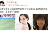 日本女星泽尻英龙华被捕!在中国如持有违禁品会受到怎样的处罚?