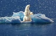 不容忽视!地球正面临气候紧急状态,11263名科学家明确发出警告