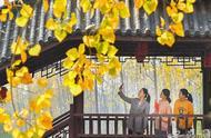 安徽11 日迎强冷空气 带来降温和降雨