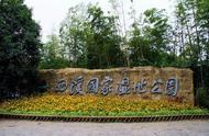 """马云豪掷1亿元,建设杭州的""""绿肺"""",西溪湿地实在是太美了"""