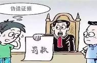 一当事人伪造重要证据!法院:罚款30万!