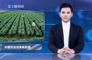 580家农场破产,美国农业欠债4160亿美元!中国迎来新机遇