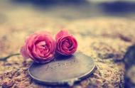 在恋爱中,情侣应该AA制吗?