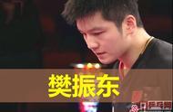 德国公开赛樊振东冠军采访说了什么?质疑的另一面,想象中的自己