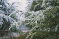 冬天,也可以很有温度
