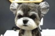 外网一只狗子火了,网友神评:这是什么神仙狗狗?