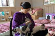 「TWICE」「分享」191015 定延和姐姐一同去猫咪保护所做义工 抱着猫咪的样子好温柔