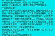 """""""果小云""""网店被指抄袭后道歉,店主身份仍备受质疑"""